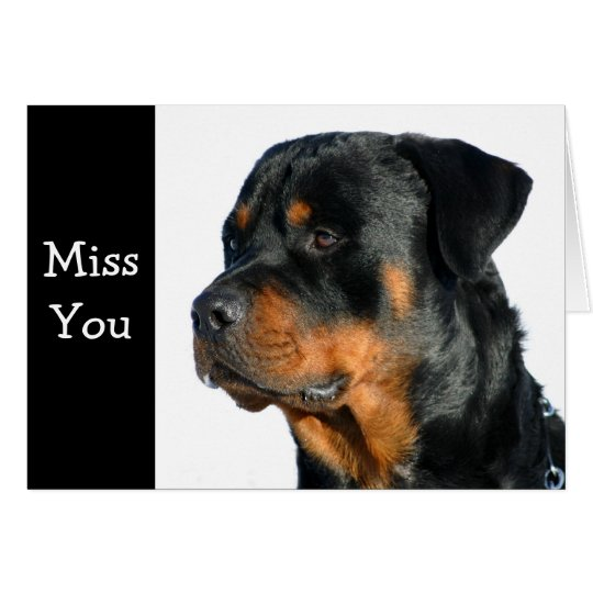 Miss You Rottweiler Dog Greeting Card - Verse