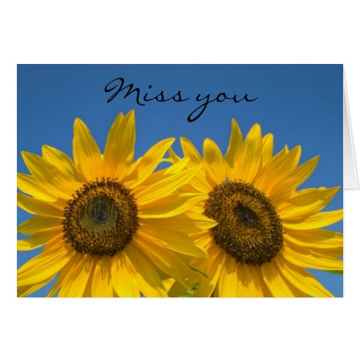 Miss You  Sunflowers  Blank Greeting Note Card