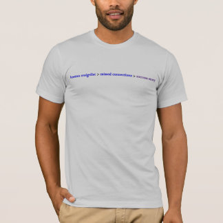Missed Connections Success Story T-Shirt