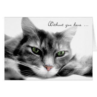 Missing You Bored Gray Kitty Cat Card