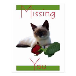 Missing You card Postcard