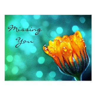 Missing You, Golden Marigold on Teal Bokeh Postcard