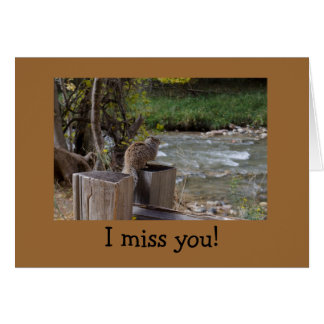 Missing You Greeting Card with Lonely Squirrel