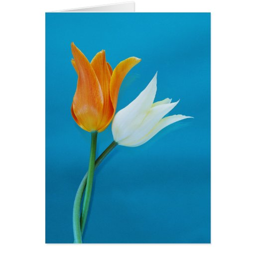 Missing You Greeting Cards Greeting Card