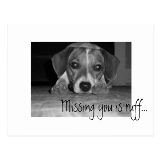 missing you is ruff!, Missing you is ruff... Postcard