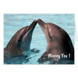 Missing You ! Lovely Dolphins - Greeting Card