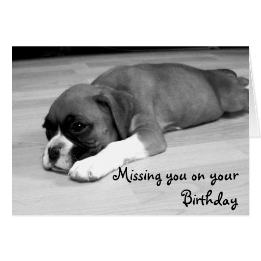 Missing you on your Birthday Boxer greeting card