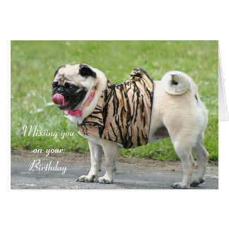 Missing you on your Birthday Pug greeting card