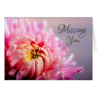 Missing You Pink Chrysanthemum Macro Photo Card