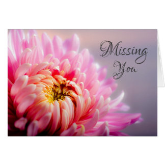 Missing You Pink Chrysanthemum Macro Photo Note Card