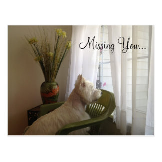 Missing You... Postcard