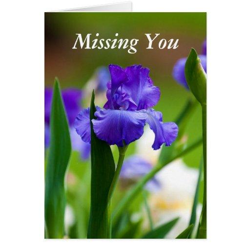 Missing You Purple Iris Greeting Card