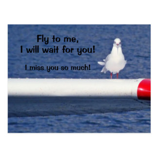 MISSING You - Seagull Postcard
