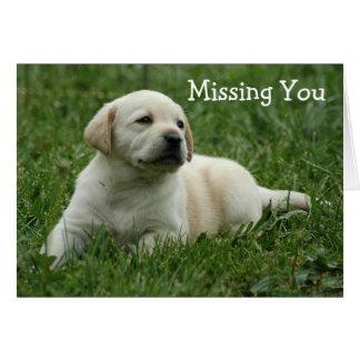 Missing You Yellow Labrador Retriever Puppy Card