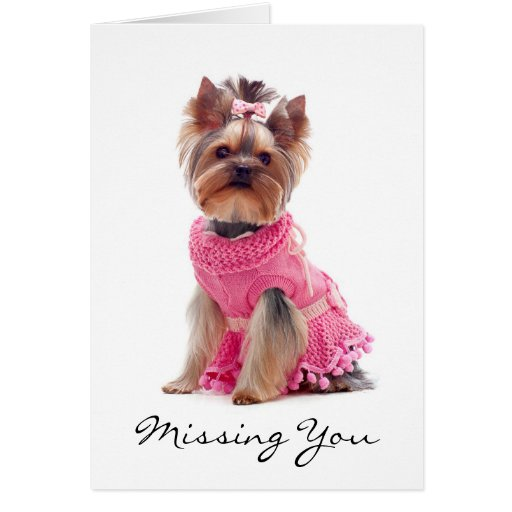 Missing You Yorkshire Terrier Greeting Card  Verse