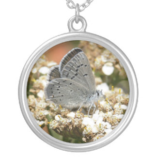Mission Blue Butterfly Round Pendant Necklace