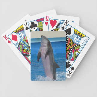 Mississippi Dolphin Bicycle Playing Cards