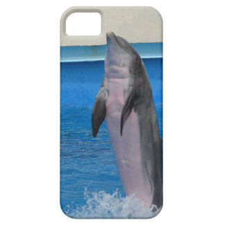 Mississippi Dolphin iPhone 5/5S Covers