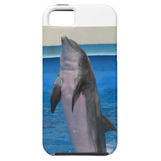 Mississippi Dolphin iPhone 5 Cases