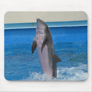 Mississippi Dolphin Mouse Pad