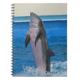 Mississippi, Florida Dolphin Spiral Notebooks