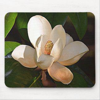 Mississippi Magnolia Mouse Pad