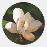 Mississippi Magnolia Round Sticker