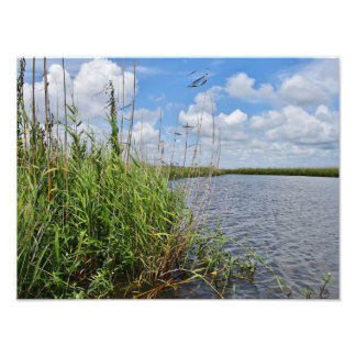 Mississippi Marsh Photo Print