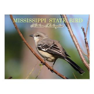 Mississippi State Bird - Northern Mockingbird Postcard