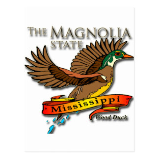 Mississippi Wood Duck Magnolia State Postcard