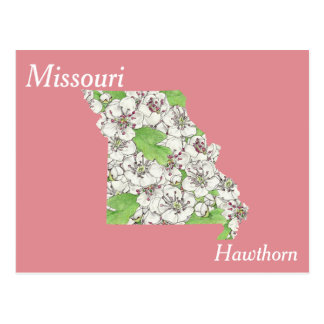 Missouri State Flower Collage Map Postcard