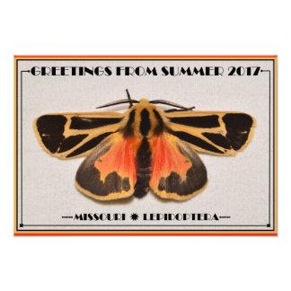 Missouri Tiger Moth. Photo Print