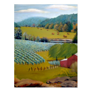 Missouri Vineyard Oil Landscape Painting Postcard