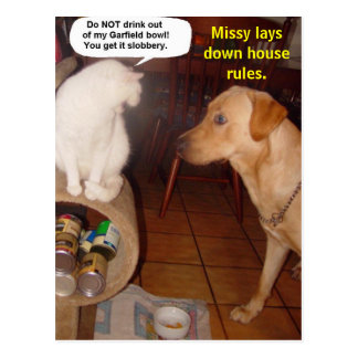 Missy lays down house rules. postcard