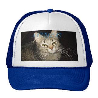 MISSY THE FAT CAT, KITTY CAT MESH HAT