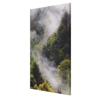 Mist rising from mountainside after spring rain, stretched canvas print
