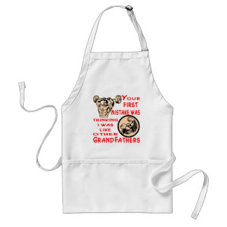 Mistake Was Thinking I Was Like Other Grandfathers Standard Apron