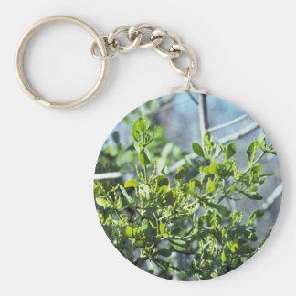 Mistletoe Key Ring