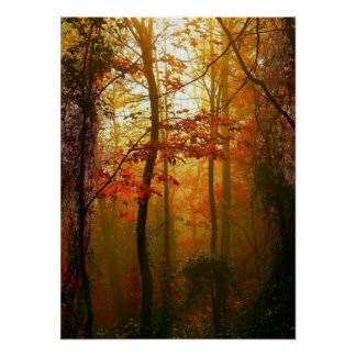 Misty Autumn Morning Poster