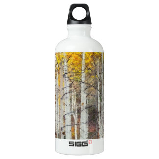 Misty Birch Forest Water Bottle