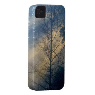 Misty Forest in Fog Nature Scenery Blackberry Case