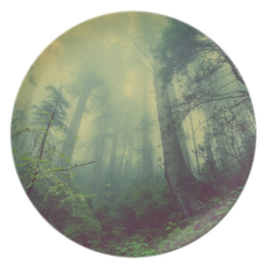 Misty forest plate