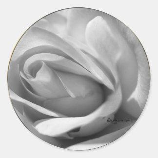 Misty Gray Rose Wedding Envelope Sticker Round Stickers