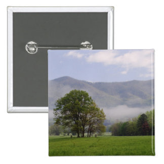 Misty meadow and Rich Mountain Cades Cove Button