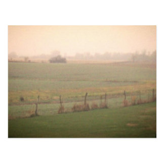 Misty Meadow Postcards