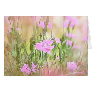 Misty Morning Dianthus Card