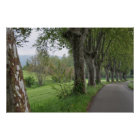 Misty morning in Provence print