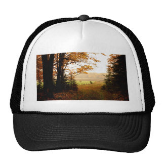 Misty Morning in the Country Cap