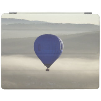 Misty Morning iPad 2/3/4 Smart Cover iPad Cover