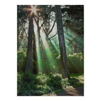 misty morning rays 14 cm x 19 cm invitation card